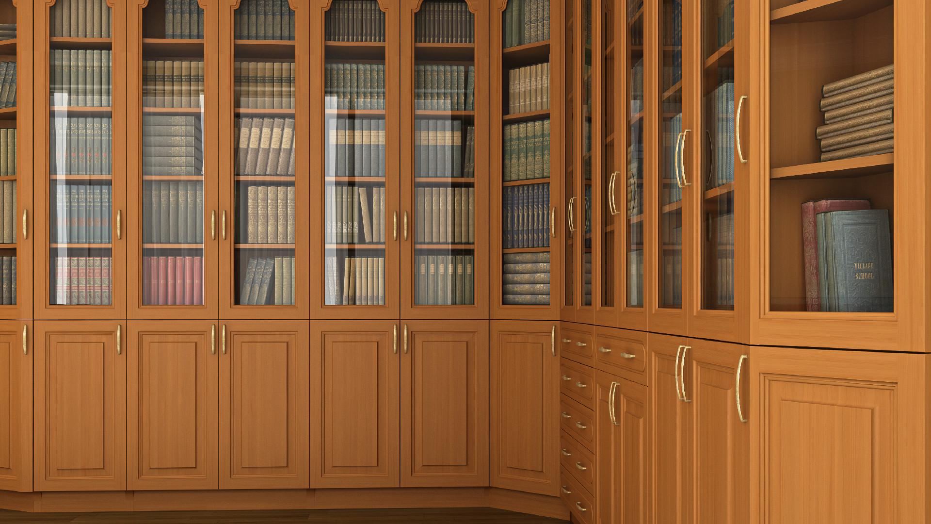 Библиотека вид 1